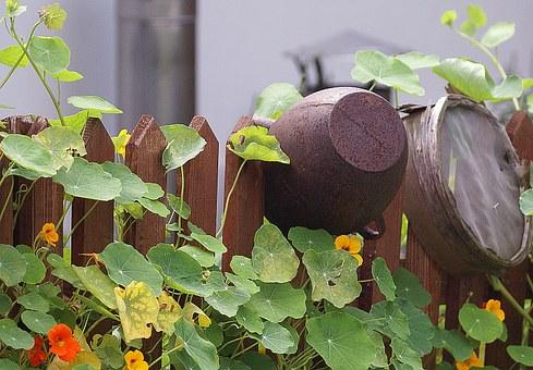 jardin suspendu